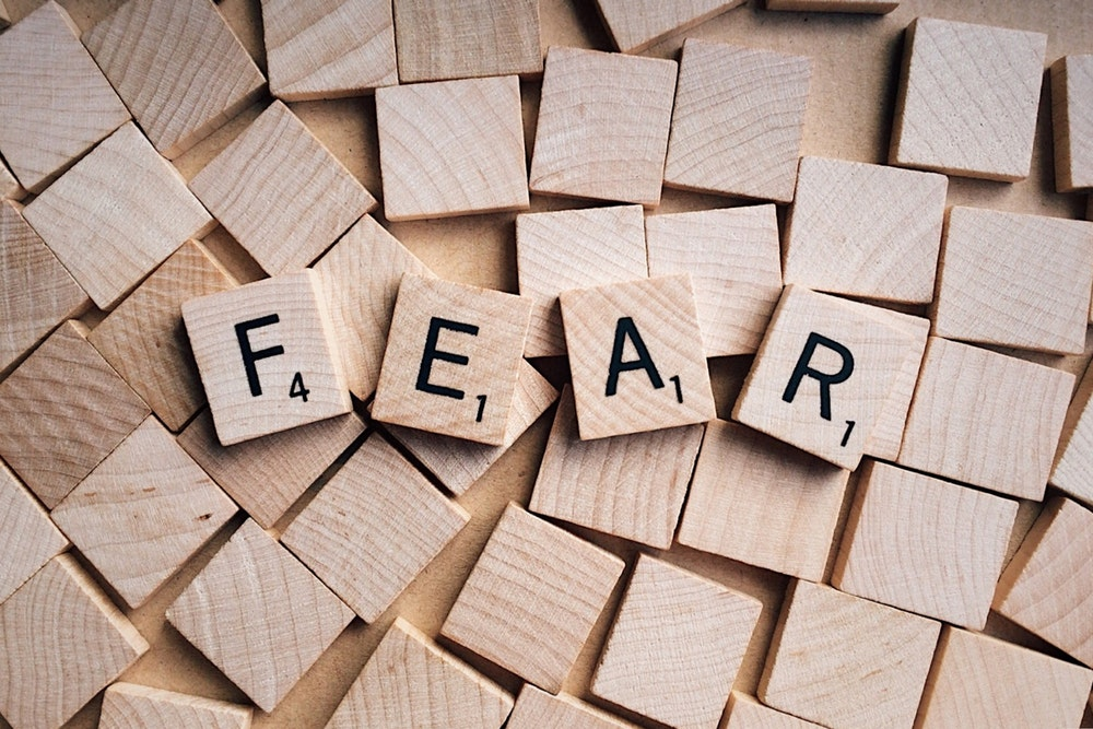 fear, mastering fear, make money from home, income system, make money right, multiple income, marketing compensation, income online, earning an income, network marketing, MLM, freedom of time and money, work at my own pace, downsized, income opportunities, work from home, self employment opportunities, be my own boss, economic freedom, make money from home, online, The Basloe Group, Sara Basloe